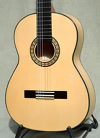Arias Flamenco Guitar