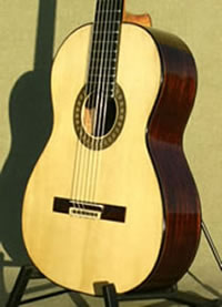 Arias historical guitar