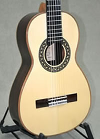 Arias Parlor Guitar