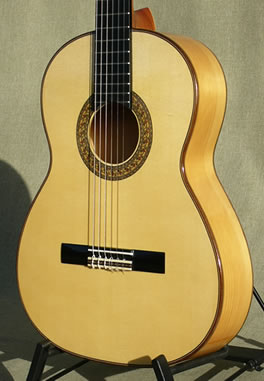 Flamenco Guitar stock