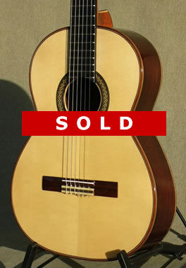 Arias Guitars Guitars In Stock